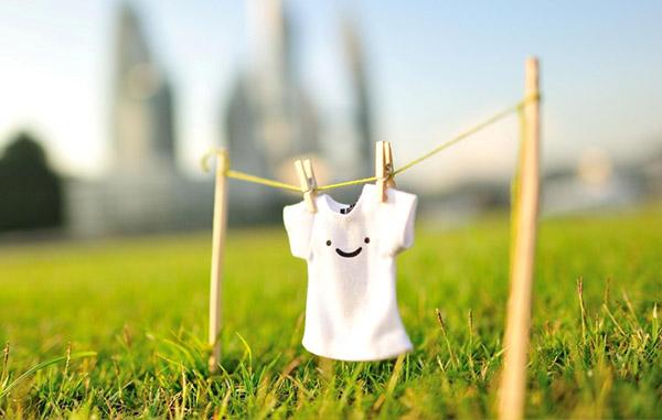 Services de nettoyage respectueux de l'environnement